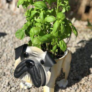 pug garden ornament