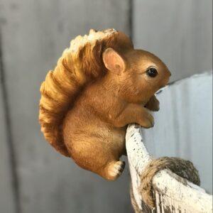 squirrel plant pot decoration